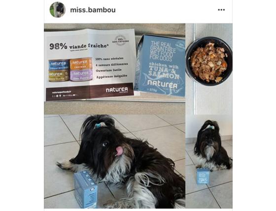 Test Produit – Miss Bamboo