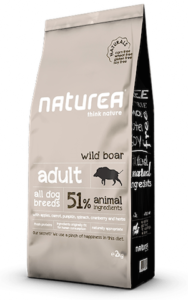 Adult-wild-boar